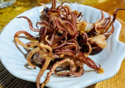 tentaculodelula